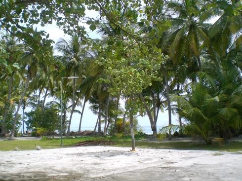 Maldives, Diffushi