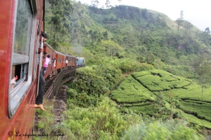Train pour kandy